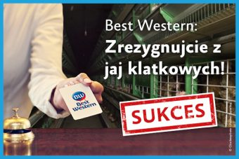Koniec klatek wBest Western Hotels