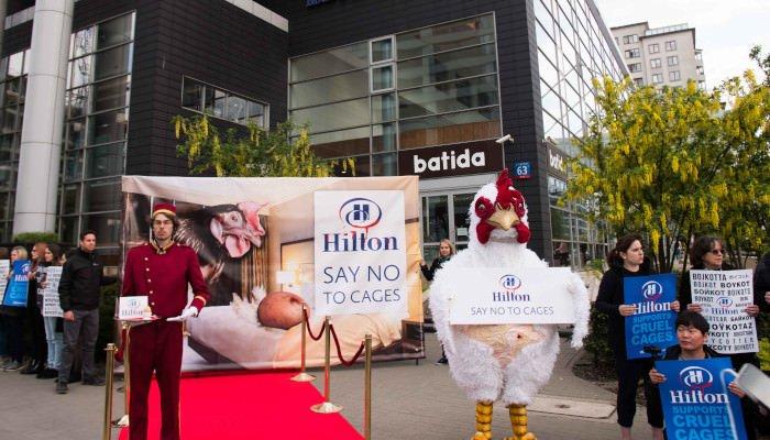Aktion Hilton Bestwestern