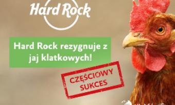 Hard Rock bezjaj klatkowych – częściowy sukces
