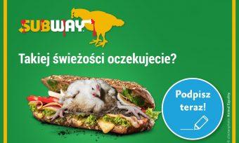 Petycja dosieci Subway – sukces!