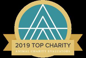Fundacja Alberta Schweitzera znagrodą TOP CHARITY 2019