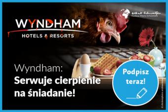 Petycja: Wyndham – wycofaj jaja zchowu klatkowego!