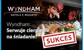 Koniec jaj klatkowych wWyndham!